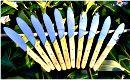 Service de table Provence : couteaux inox et buis